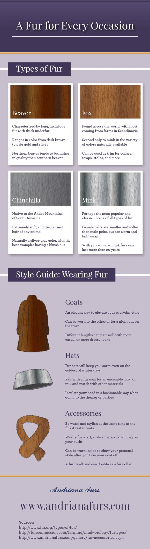 A Fur For Every Occasion Infographic